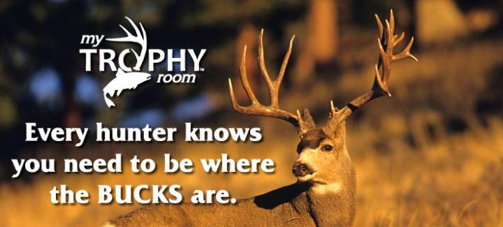 Be Where the Bucks Are!
