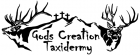 God's Creation Taxidermy