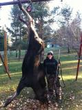 First ever moose